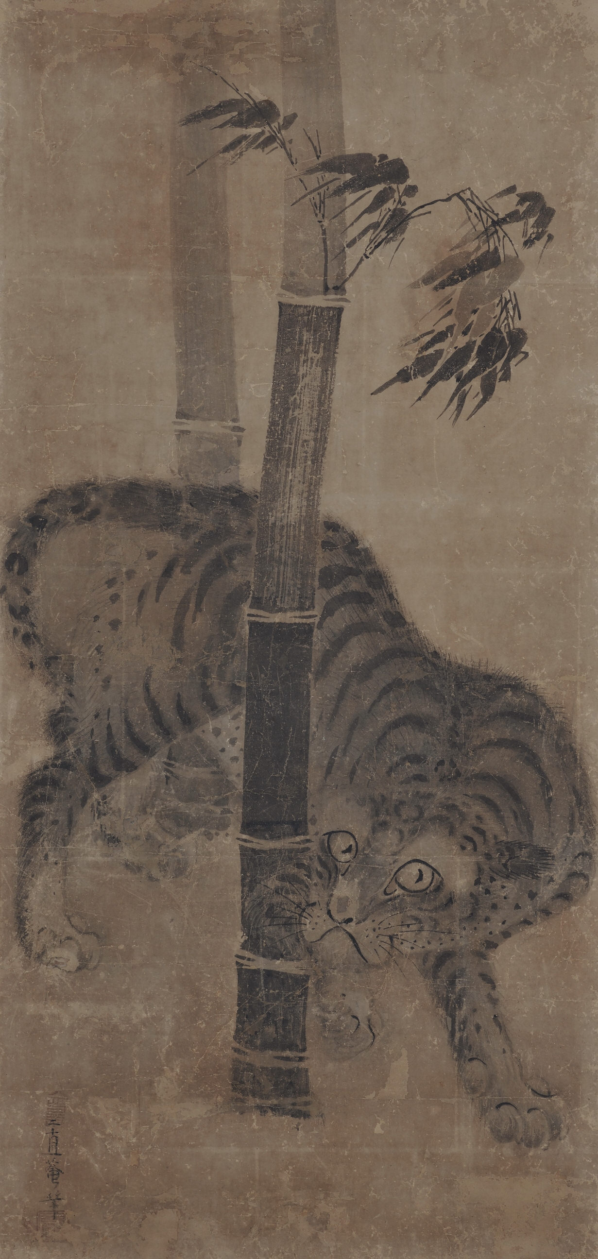 Japanese artist Soga Nichokuan (ca 1625-1660). Japanese tiger painting.  Hanging