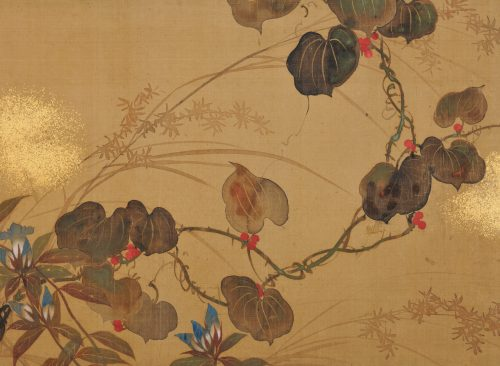Japanese Rinpa artist Sakai Hoitsu. Rimpa school folding screen. Japanese flower painting. Image of detail.