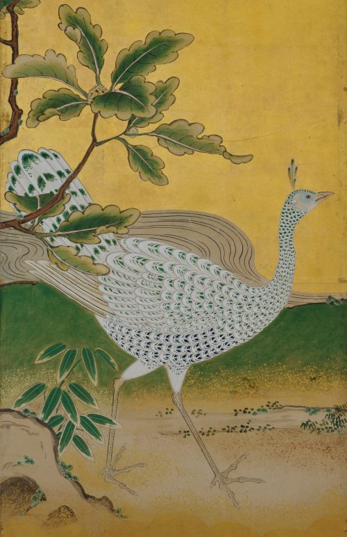 Phoenix and Peacocks. A pair of six-panel Japanese folding screens by Tsunetake Yotei (n.d.). First half of the 18th century. Kobikicho Kano school. Image of peahen.