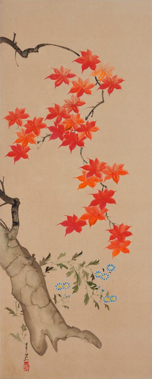 Suzuki Kiitsu (1796-1858) - japanese painting. maples. Seisei Kiitsu 菁々其一