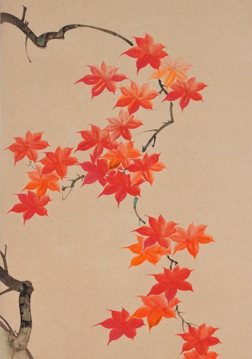 Suzuki Kiitsu (1796-1858) - japanese painting. maples. Seisei Kiitsu 菁々其一. detail.