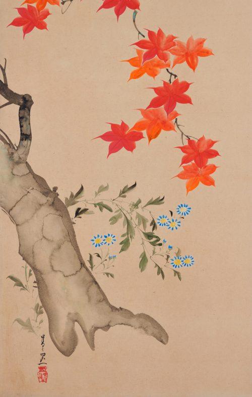 Suzuki Kiitsu (1796-1858) - japanese painting. maples. Seisei Kiitsu 菁々其一. signature and seal.