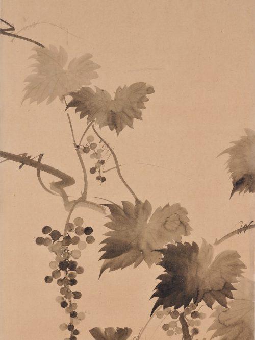 Suzuki Kiitsu (1796-1858) - japanese painting. grapevines. Seisei Kiitsu 菁々其一. detail.