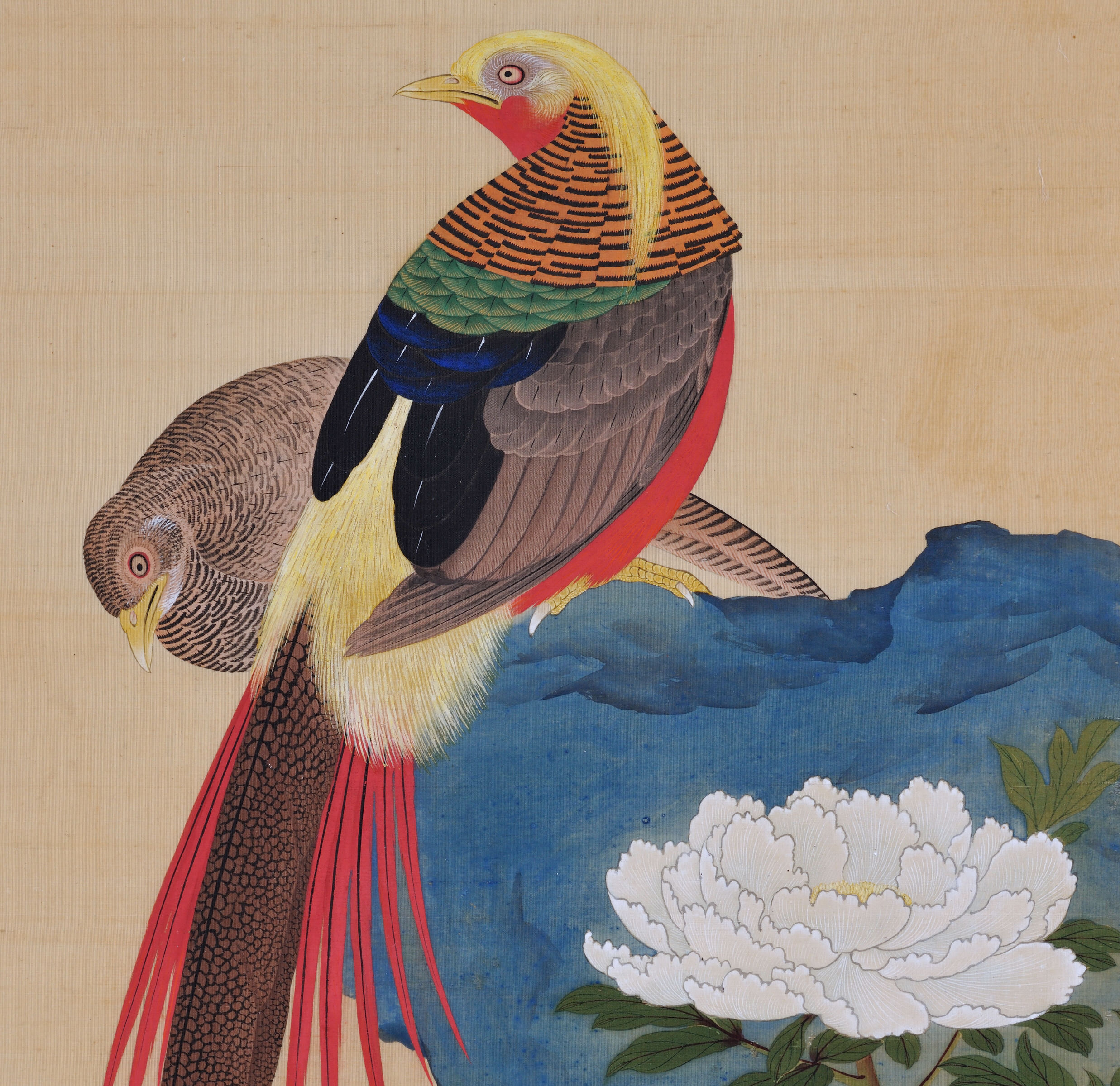 Takakura Zaiko Fl 1854 1860 Pheasants Amp Peonies