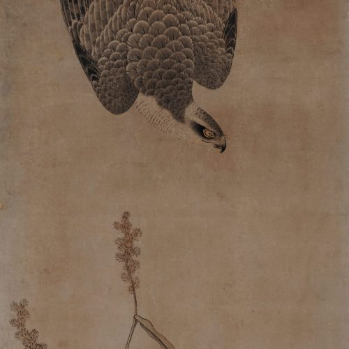 Mitani Toshuku (1577-1654). Unkoku School. Japanese falcon painting. Hawk and maize.