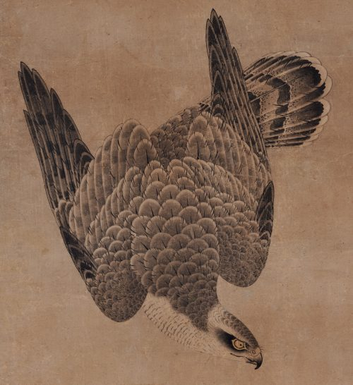 Mitani Toshuku (1577-1654). Unkoku School. Japanese falcon painting. Hawk detail.