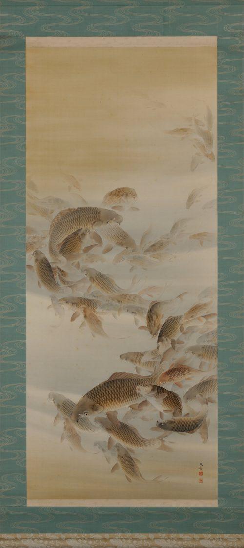 Matsunaga Tensho (1897-1945). Japanese scroll painting. Group of carp or koi. Image of full scroll.