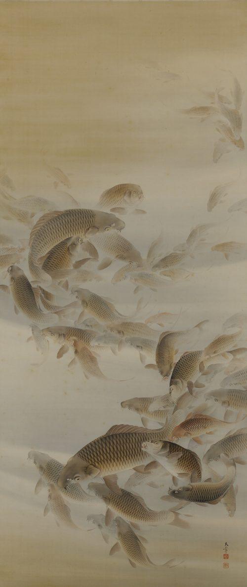 Matsunaga Tensho (1897-1945). Japanese scroll painting. Group of carp or koi.
