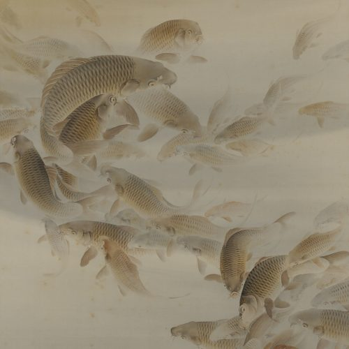 Matsunaga Tensho (1897-1945). Japanese scroll painting. Group of carp or koi.