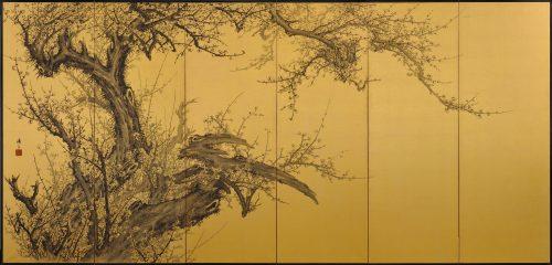 Japanese folding screen pair. Plum Blossoms by Kawakami Koritsu (1869-1957). Left screen.