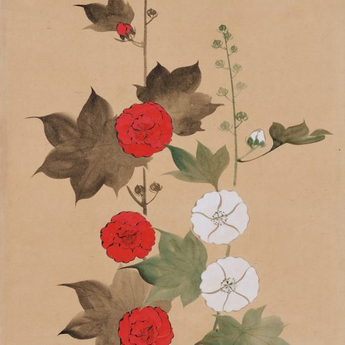 Suzuki Kiitsu (1796-1858) - japanese painting. hollyhocks. Seisei Kiitsu 菁々其一