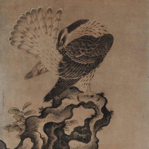 Mitani Toshuku (1577-1654). Unkoku School. Japanese hawk painting.