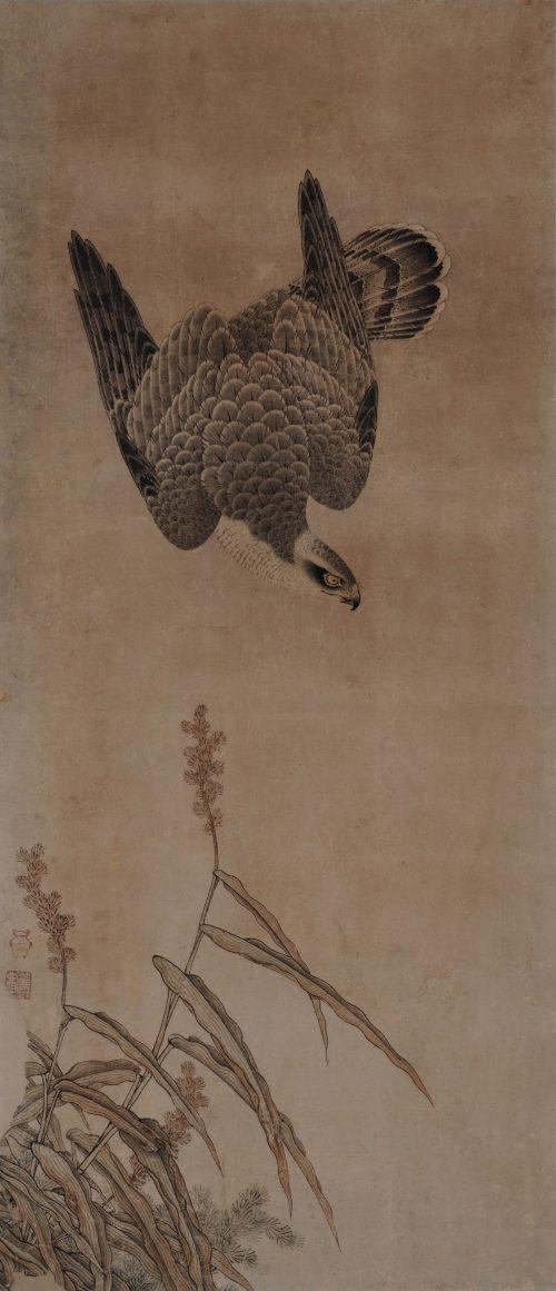 Mitani Toshuku (1577-1654). Unkoku School. Japanese falcon painting. Hawk and maize.